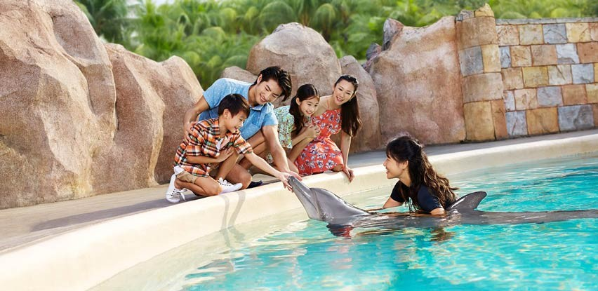 Dolphin Island, Sentosa in Singapore / Image Credits: Dolphin Islands