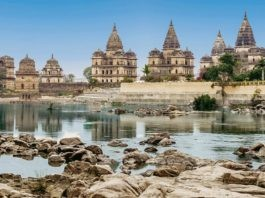 Orchha Cover Image